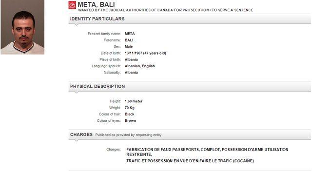 Emri:  Meta_Bali.jpg  Shikime: 220  Madhësia:  24.1 KB